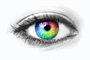 The amblyopic eye