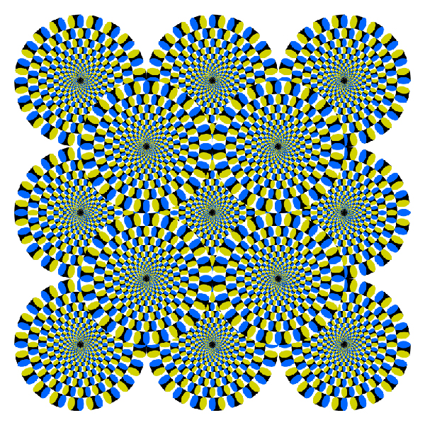 The image appears to be moving even though it
